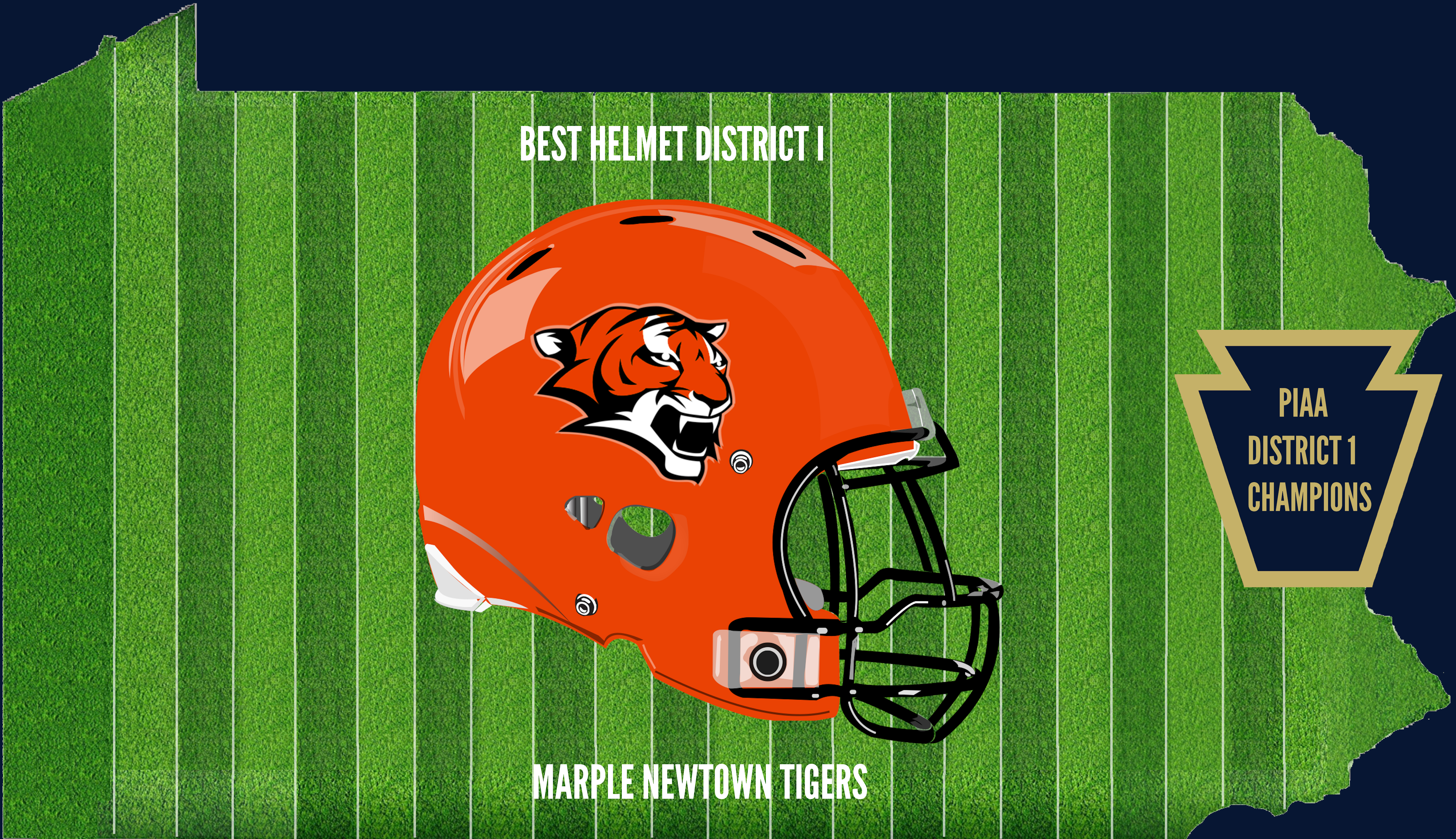 District 1 Champion Helmet MN
