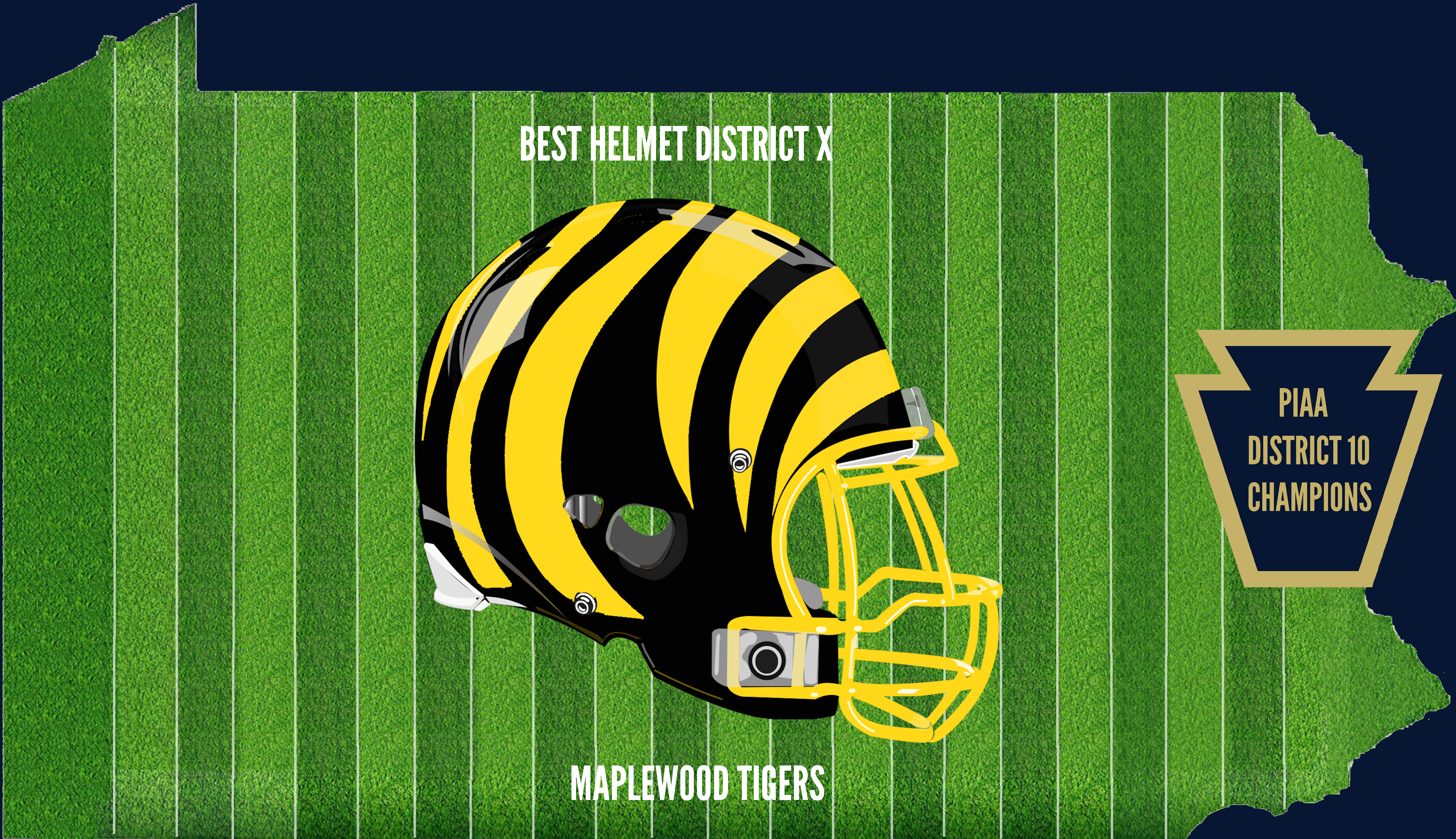 District 10 Champion Helmet