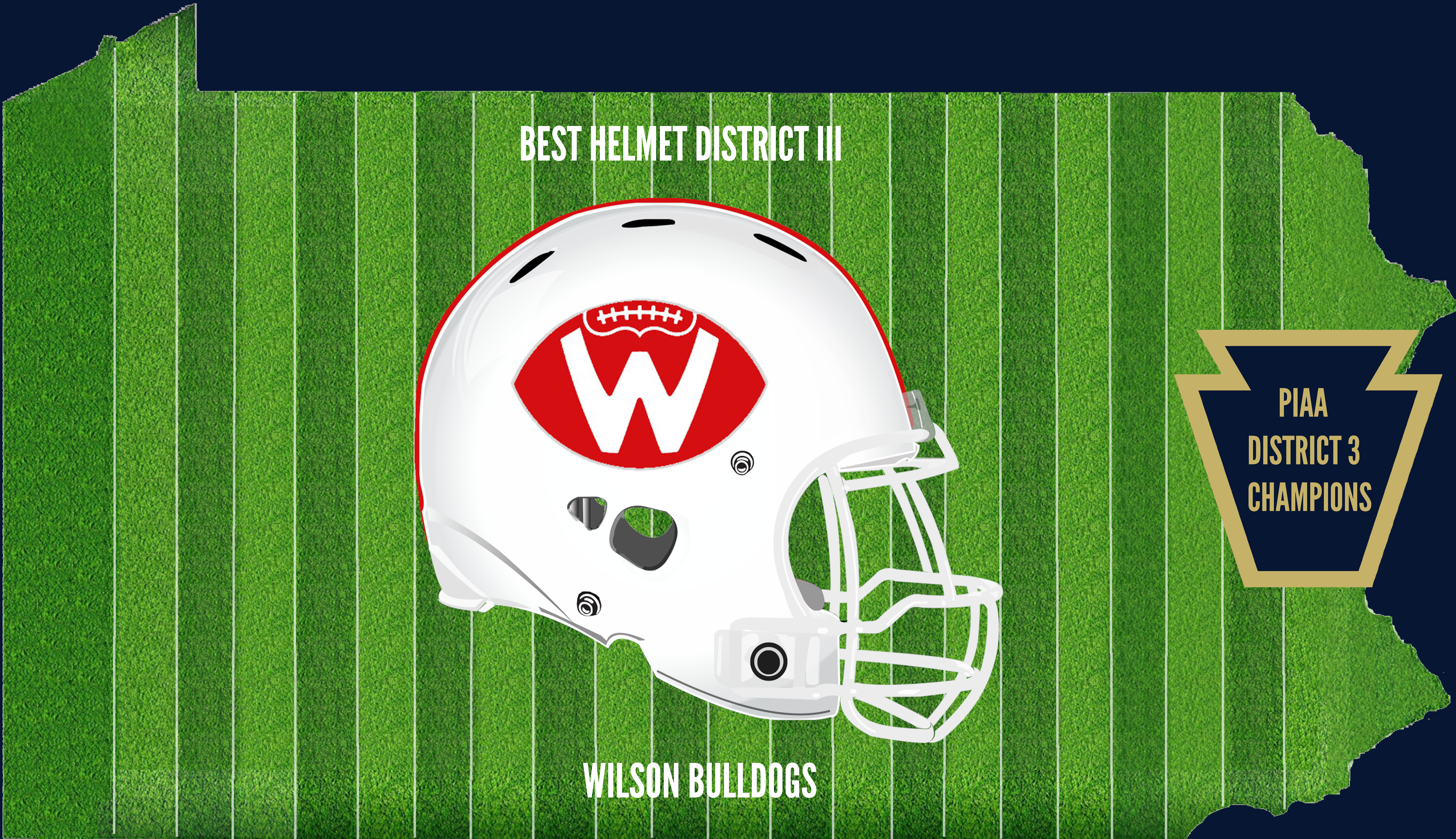 District-3 Champion Helmet