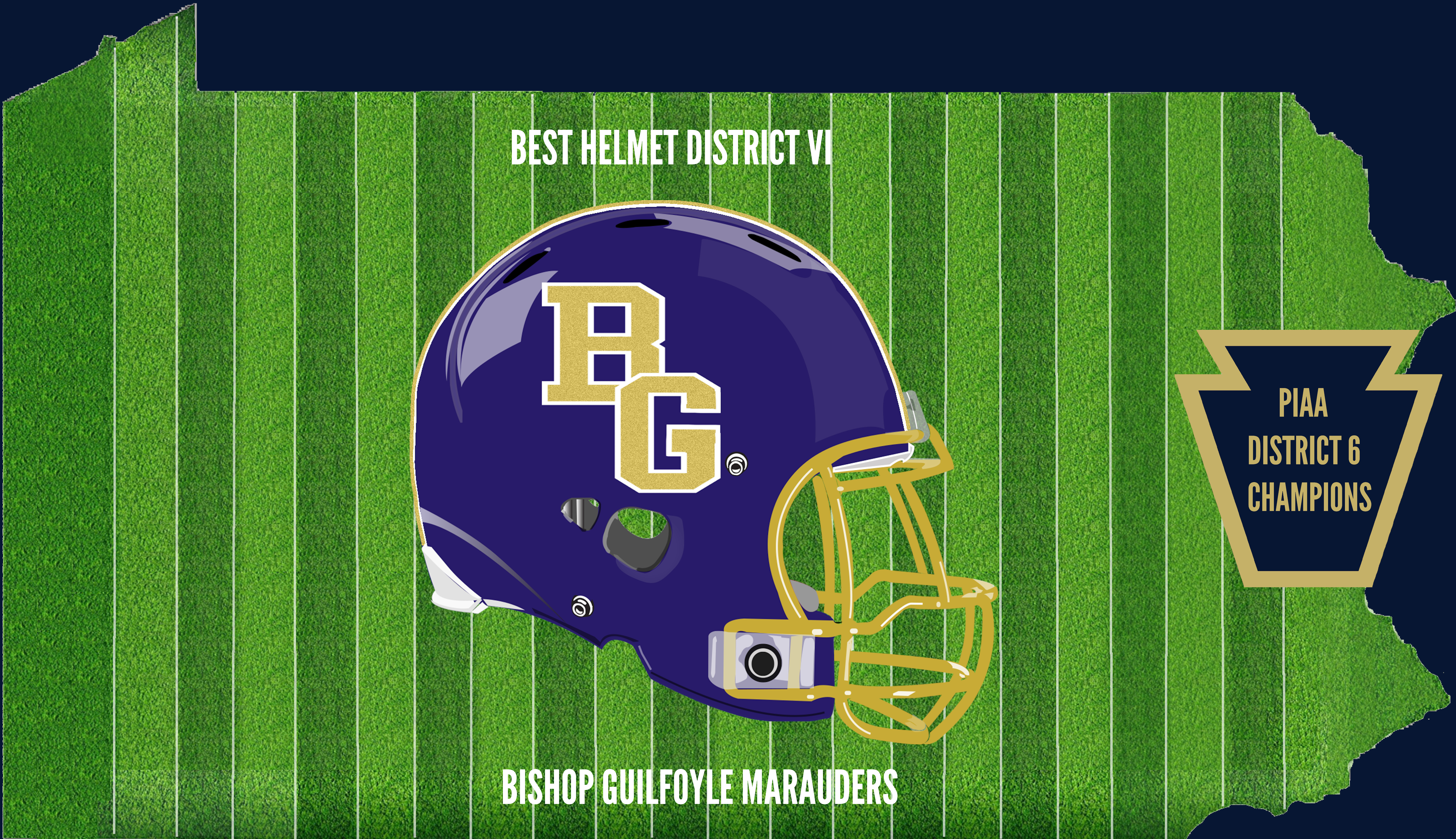 District 6 Champion Helmet