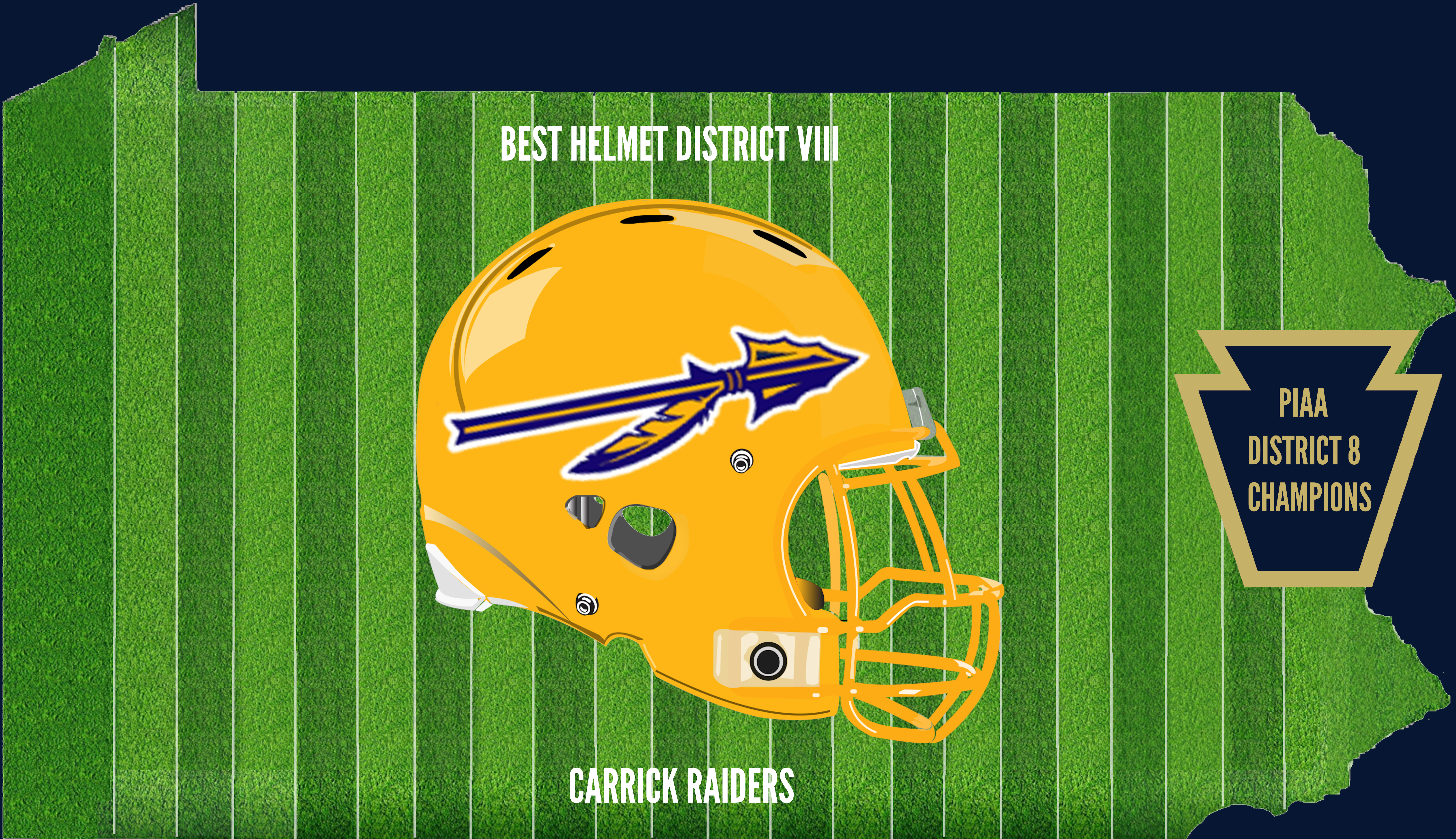 District 8 Champion Helmet